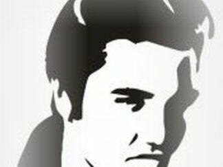 46 Elvis stencil