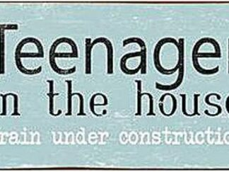 Skilt - Teenager in the house
